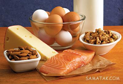 مواد غذایی پروتئین دار کدامند؟