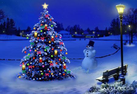 عکس زیباترین مدل های تزیین درخت کاج کریسمس