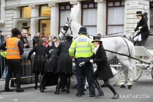 سکته اسب جوان و مردن وسط خیابان + تصاویر
