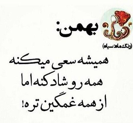 کلیپ تبریک تولد بهمن ماهی