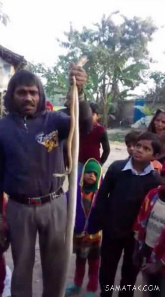 دوختن دهان مار با نخ و سوزن توسط مرد هندی + تصاویر