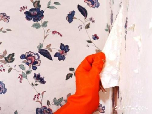 آموزش تصویری کندن کاغذ دیواری از روی دیوارهای مختلف