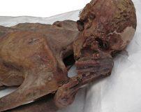 خالکوبی قدیمی روی جسد مومیایی شده 5000 ساله