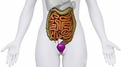 علائم مثانه سالم + تغذیه سالم برای مثانه