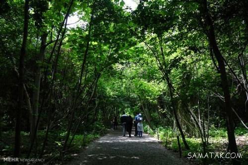 آدرس باغ گیاه شناسی تهران | تصاویر باغ گیاه شناسی تهران