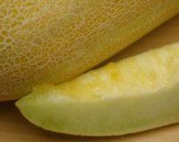تعبیر خواب خربزه چیست | تعبیر خواب خربزه زرد – سبز – خراب – گندیده