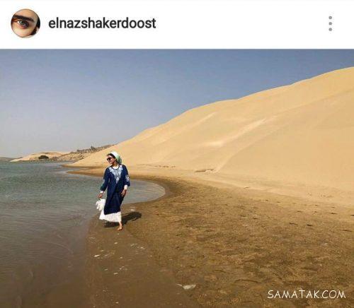 تصاویری از پاهای لخت الناز شاکردوست کنار دریا