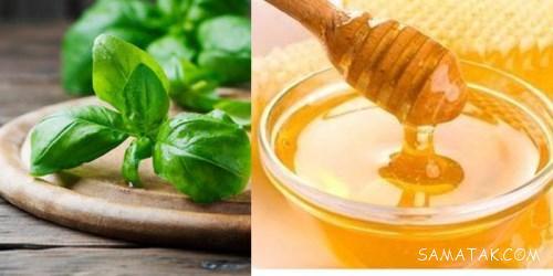 عسل ریحان چه خاصیتی دارد   خواص و فواید عسل ریحان برای بدن