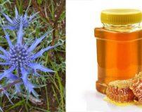 عسل زولنگ چه خاصیتی دارد | خواص دارویی عسل زولنگ