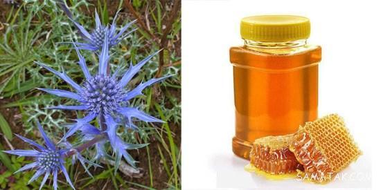 عسل زولنگ چه خاصیتی دارد   خواص دارویی عسل زولنگ