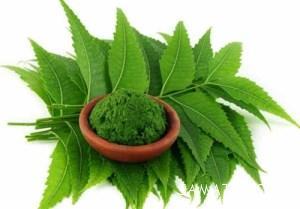 داروهای گیاهی برای درمان تبخال تناسلی در منزل