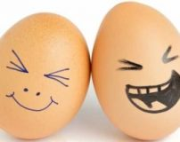 کاملترین مرجع تعبیر خواب تخم مرغ از دیدگاه معبران بزرگ
