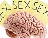 دلایل معتاد شدن به رابطه جنسی | درمان اعتیاد به رابطه جنسی در زن و مرد