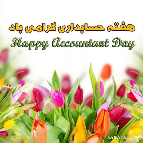 پیام تبریک و عکس نوشته روز حسابدار | عکس پروفایل حسابداری دخترونه