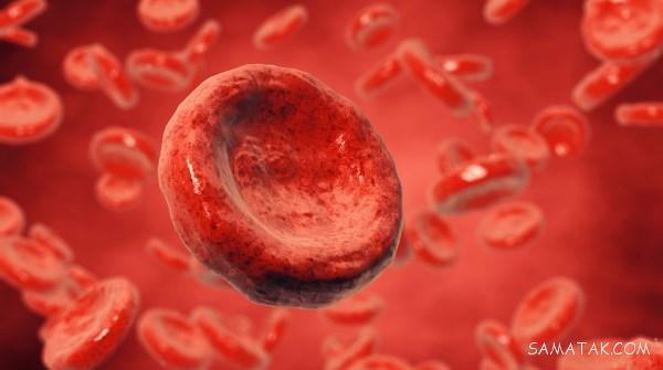 چگونه گلبول های سفید خون را کاهش دهیم | مواد غذایی کاهش دهنده گلبول سفید