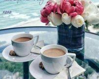 سلام صبح بخیر زیبا و عاشقانه | متن سلام صبح بخیر پر انرژی برای عشقم