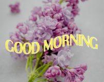پیامک صبح بخیر روز دوشنبه | متن سلام صبح بخیر روز دوشنبه