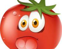 تعبیر خواب گوجه فرنگی قرمز – پخته – خوردن – سبز – رسیده و گندیده