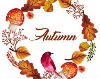 متن ادبی در مورد فصل پاییز | مطلب در مورد پاییز
