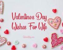 پیام تبریک ولنتاین برای همسر | متن تبریک ولنتاین به همسرم