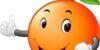 طبع پرتقال گرم است یا سرد | طبع پرتقال در طب سنتی