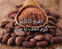 طبع کاکائو گرم است یا سرد | طبع کاکائو در طب سنتی