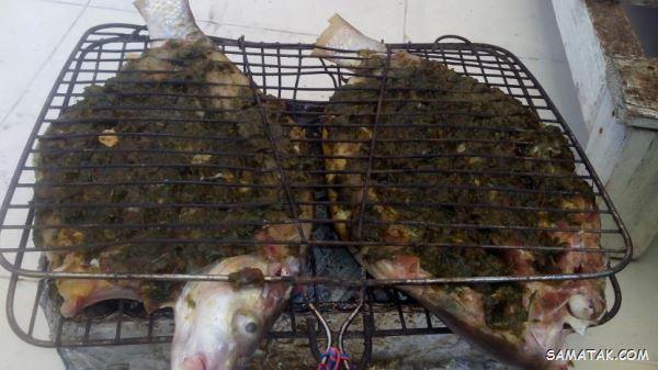 طرز تهیه ماهی کبابی با توری روی زغال + بهترین ماهی برای کباب چیست