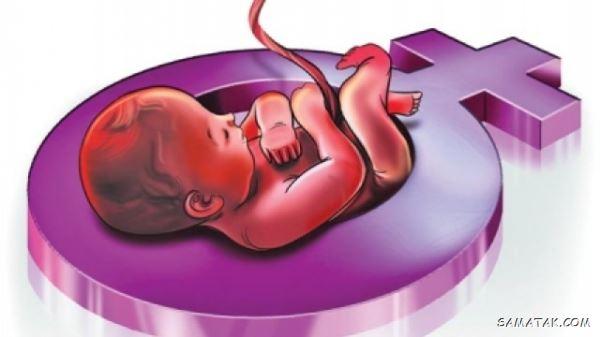 تشخیص جنسیت جنین از روی ضربان قلب