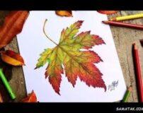 نقاشی فصل پاییز با مداد رنگی | نقاشی در مورد پاییز کودکانه