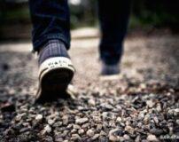 بهترین زمان پیاده روی برای لاغری | برای لاغری چقدر پیاده روی کنیم